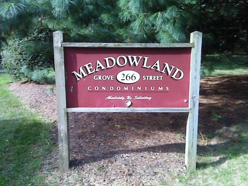 meadowlandResize